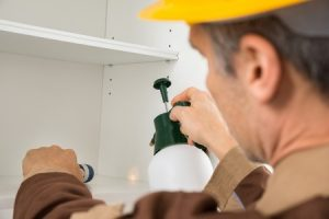 Boosting Up Safety Levels In Your House, The Right Way image